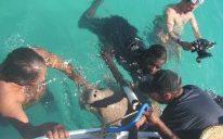 Rangers take a dive to help dugongs